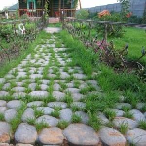 Травница садовая дорожка.Продажа плитки по Запорожью.