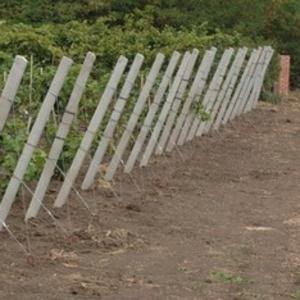 Железобетонные столбы для винограда малины Запорожья.