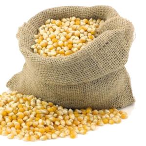 ЗАКУПАЕМ зерновые культуры