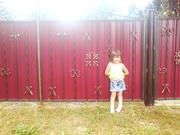 Забор из профнастила Киев,  ворота из профнастила для дома и дачи Киев